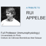 A Tribute to Rui Appelberg